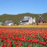 北海道発おすすめツアー